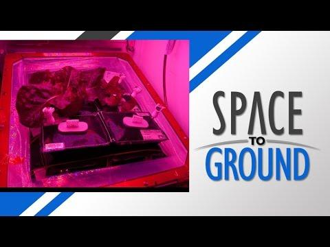 Space To Ground: Space Gardening: 7/31/2015