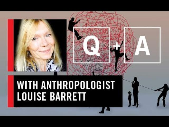 WS CONNECT live Q&A wth Louise Barrett