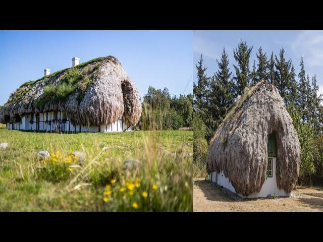 Yes They Are Real – Seaweed Homes
