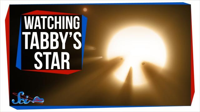 Why Everyone Was Watching Tabby's Star Last Weekend