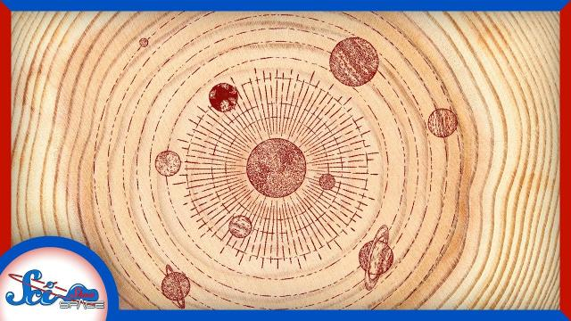The Astronomical Records in… Trees?