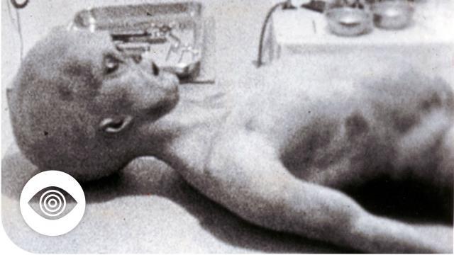 Is Area 51 Hiding Alien Remains?