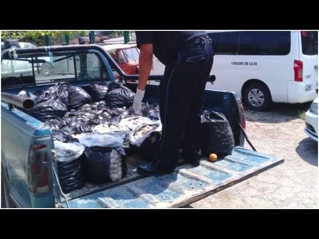 Police In Mexico Pulled Over A Pickup Truck, And Inside They Found The Most Troubling Cargo