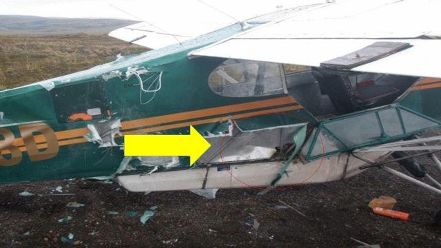 You Know You're In Trouble When A Bear Shreds Your Plane, But How This Pilot Fixes It Wow   !