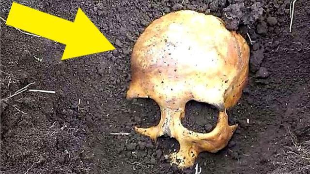 Man Finds Skull In Garden, Wife Tells Him It Belongs To Her Ex Husband