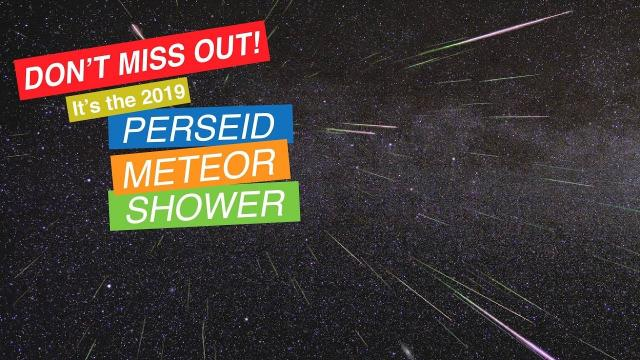 The 2019 Perseid Meteor Shower