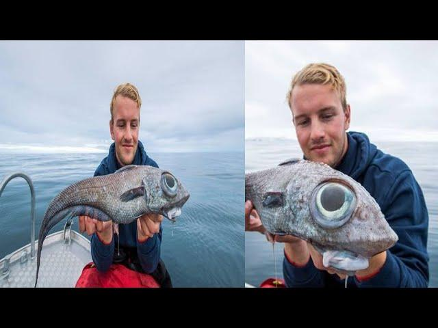 Dinosaur Like Fish With Bulging Eyes Caught In Norway