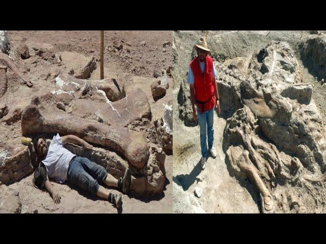 New Archaeological and Paleontological Discoveries April 2020
