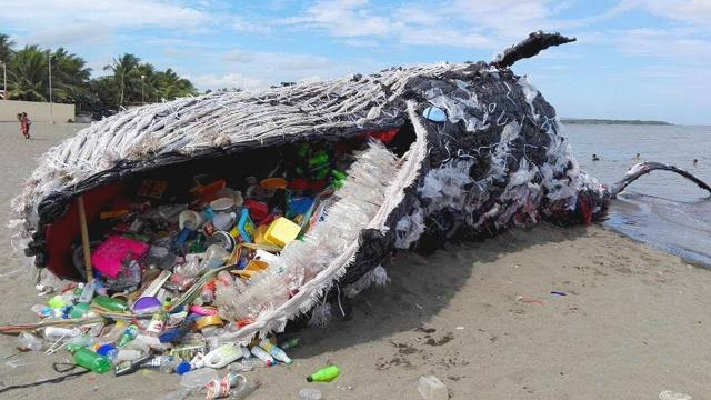 Haunting  Whale Has Washed Up in Manila. Wait till you see what washed up with the whale