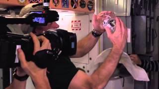 Des astronautes jouent avec de l'eau en impesanteur