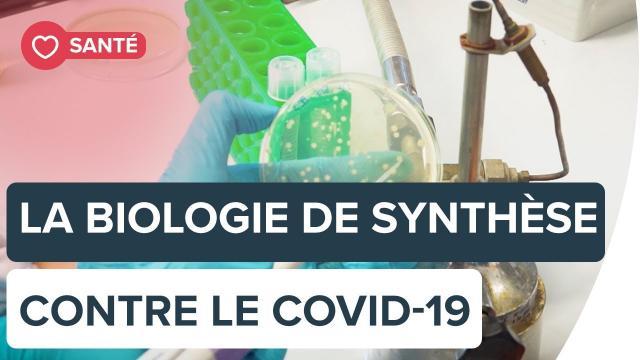 Des bactéries de synthèse peuvent-elles aider à traiter le Covid-19 ?   Futura