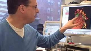 Frank Gertler discusses Mena, new cancer test possibilities