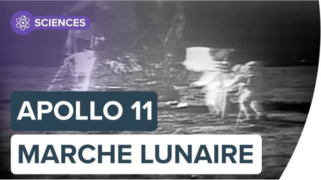 Apollo 11 : revivez les premiers pas de Neil Armstrong sur la Lune | Futura