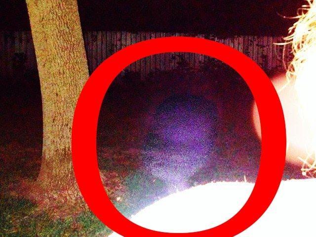 UFO Sightings Interdimensional Being or Cryptid Alien Encounter! Spooky Photo! 2014