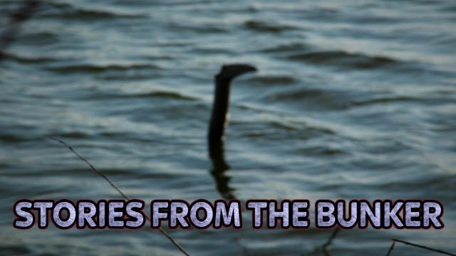 Have They Found The Loch Ness Monster's DNA? | Stories From The Bunker #46