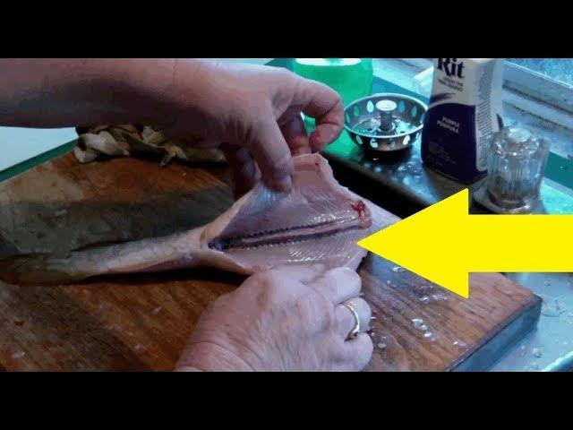 Woman Cleaning Out A Fish For Dinner Gets The Surprise Of Her Life