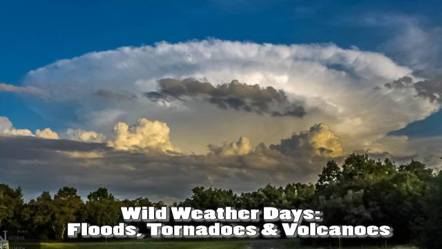 Wild Weather Days: Floods, Tornadoes, Volcanoes & this weekend.