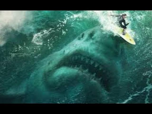 Prehistoric 50ft Megalodon shark may have been killed off by the Great White