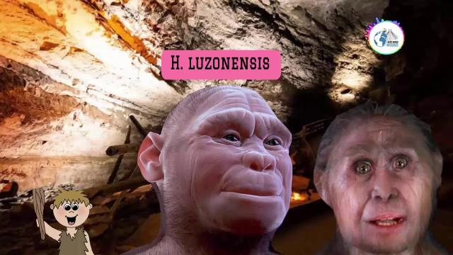 Researchers Discover Early Human Species Smaller Than the 'Hobbit'