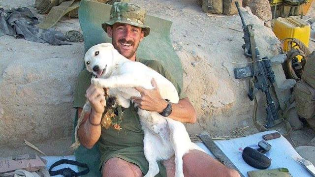 Marine And Stray Dog From Afghanistan Change Each Other's Lives
