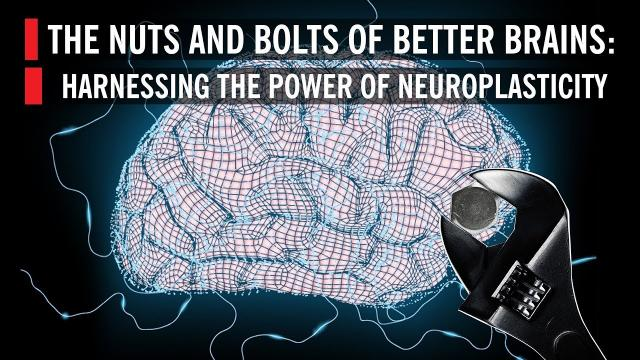 Harnessing the Power of Neuroplasticity: The Nuts and Bolts of Better Brains