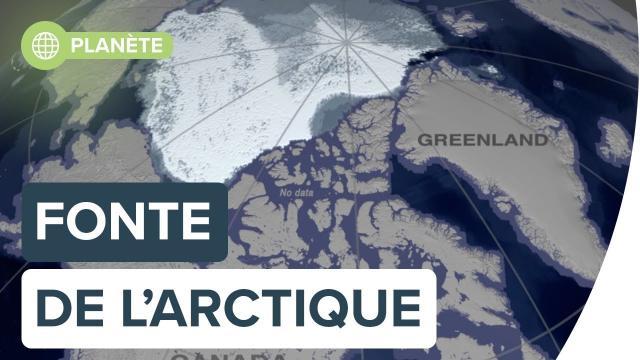 L'évolution de la fonte en arctique de 1984 à 2019 | Futura