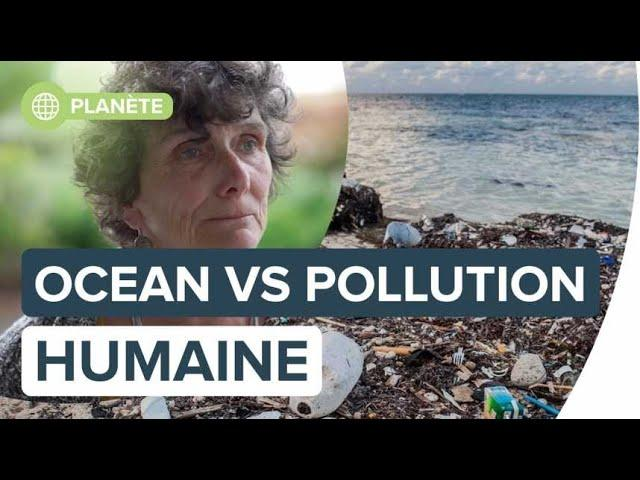L'Océan en danger face à l'exploitation et la pollution humaine | Futura