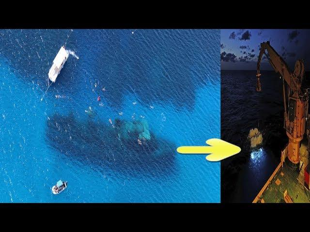Gold Artifacts Discovered in 19th Century Shipwreck