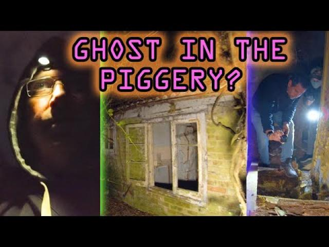 GHOST IN THE Piggery House ?