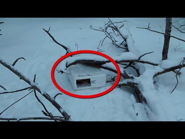 They Found This  Box In The Snow What They Found Inside Left Them Speechless