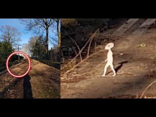 Woman captures 'small humanoid' on camera