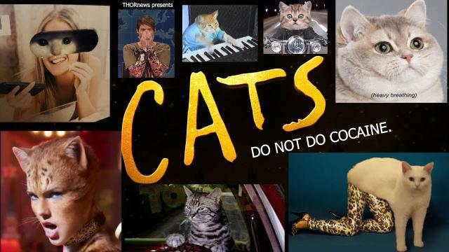 CATS the Musical the Movie is a Don't Do Cocaine PSA.