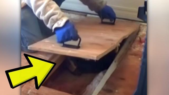 Woman Hears An Odd Sound Under Her Floorboards Before Uncovering A Chilling Sight Below