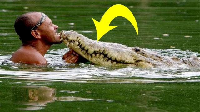Fisherman Rescues Injured Crocodile: 20 Years Later, This Happened