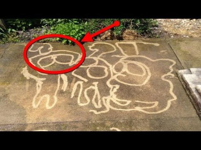 His Mom Asked Him To Wash Off The Driveway  She Didn't Expect This As A Result