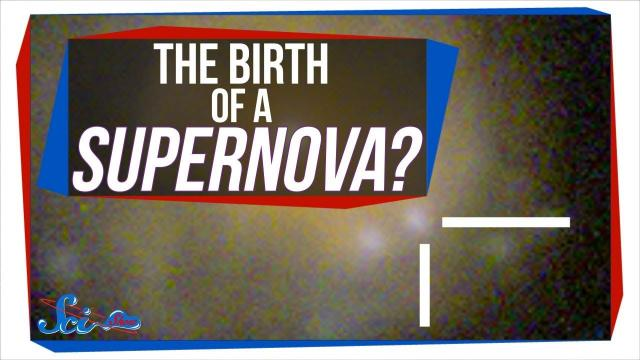Our First Glimpse of a Newborn Supernova? | SciShow News