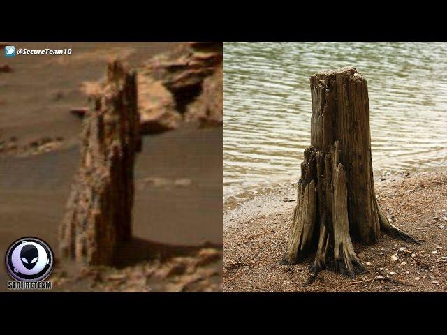 ANCIENT Tree Stump Found On Mars? 4/22/17