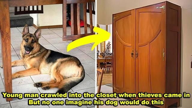 Teen Crawled into the Closet When Thieves Broke into His House, But His Dog Did Something Unexpected