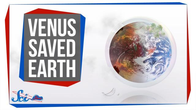 How Studying Venus Saved Earth
