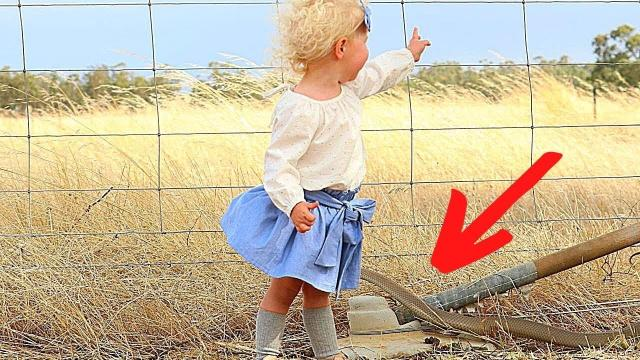 This Woman Snapped a Beautiful Picture of Her Daughter, But What She Saw Later Was Shocking !!