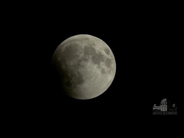 Super Blood Wolf Moon Eclipse Begins!