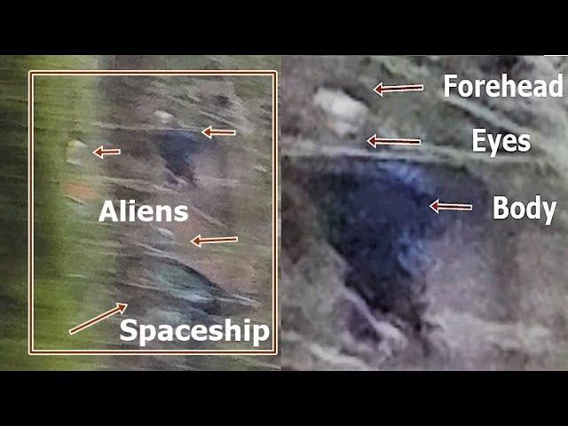 Olympia, Washington, a driver photographed three Aliens near a spaceship in a forest