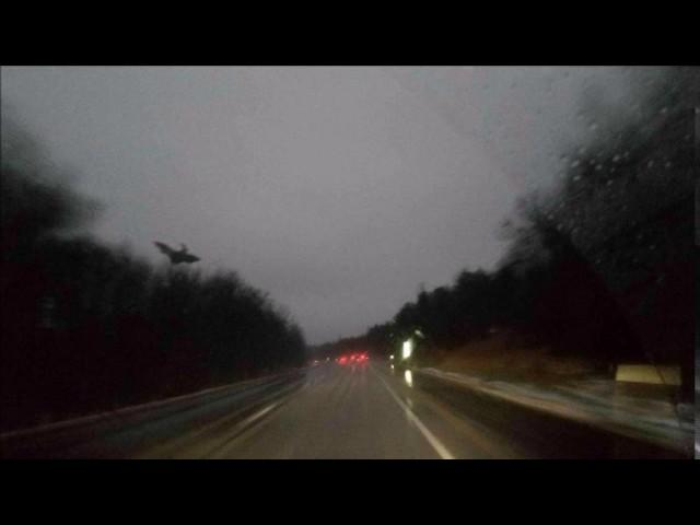 'Jersey Devil' Photographed in Pennsylvania