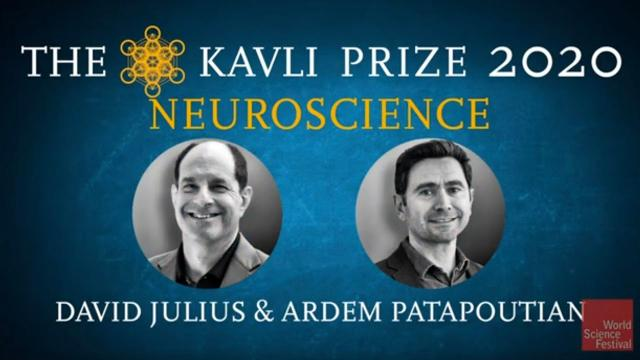 Science in Focus. The Kavli Prize 2020 | Neuroscience