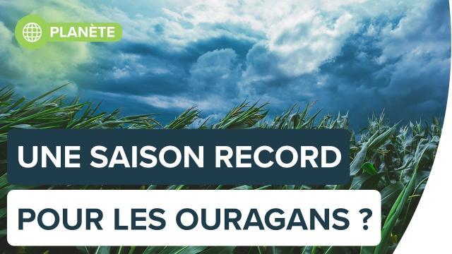 Ouragans dans l'Atlantique : une saison record en 2020? | Futura