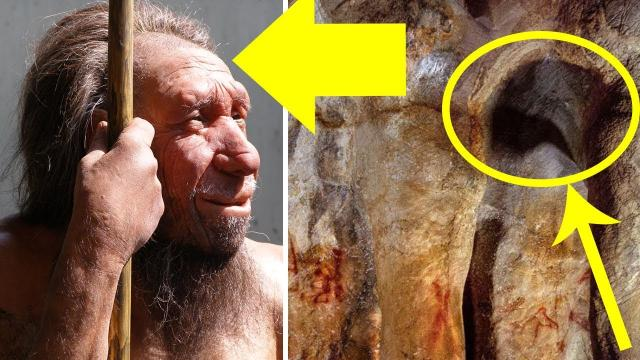 These 64,000-Year-Old Paintings Have Just Been Discovered – And They Weren't Created By Humans