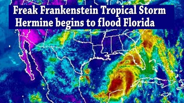 Freak Frankenstein Tropical Storm Hermine begins to Flood Florida & the East Coast