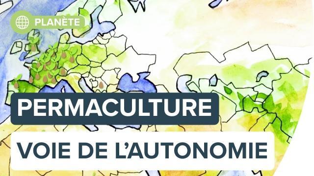 Permaculture : la voie de l'autonomie | Futura
