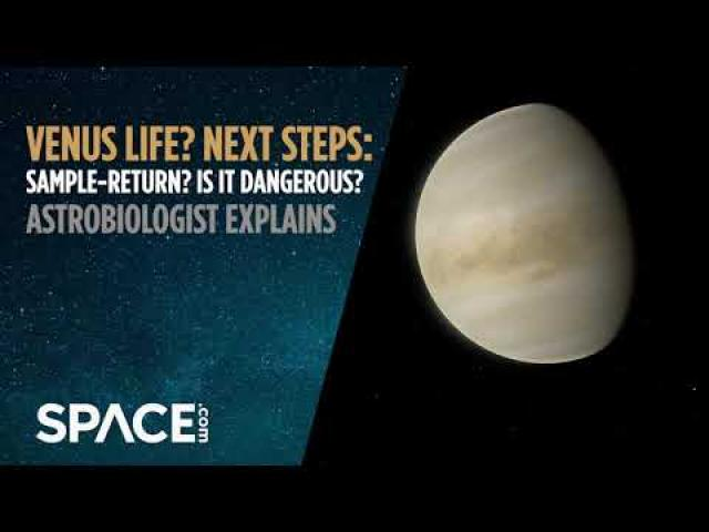 Venus life? Next steps: Sample return? Is it dangerous? Astrobiologist explains
