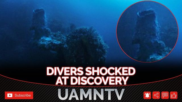 What Divers Discovered Deep Beneath The Bermuda Ocean Completely Shocked Them